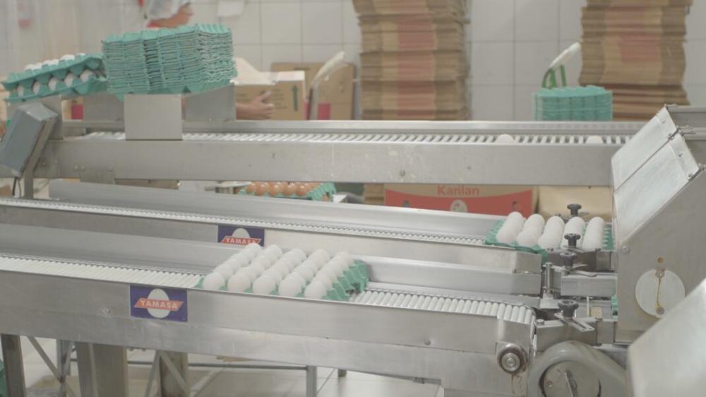 Produtos de origem animal produzidos no Piauí ganham selo de venda para todo Brasil